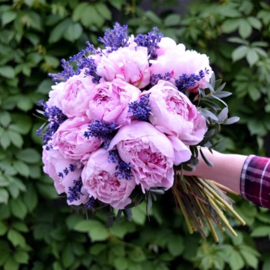Peonies with Lavender