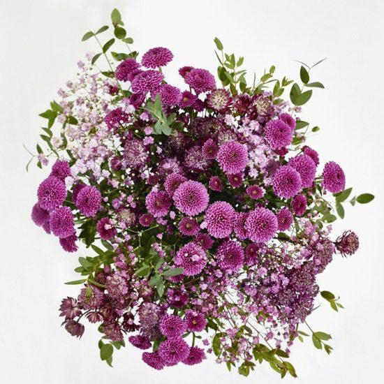 Clara Small Purple Bouquet