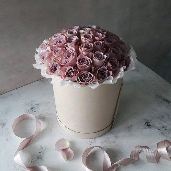 Lilac Cream