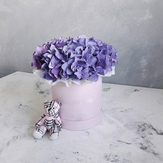 Sweet lilac sky